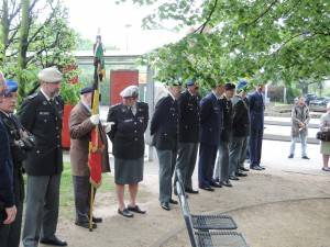Hommage aux anciens combattants (3)